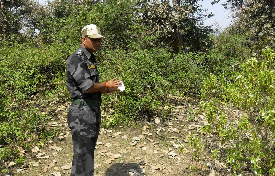 A security officer inspects the site where a Swiss woman reportedly was gang raped by a group of eight men while touring by bicycle with her husband, near Orchcha, in the central Indian state of Madhya Pradesh, on Saturday, March 16, 2013. Authorities detained and questioned 13 men in connection with the latest attack, which occurred Friday night as the couple camped out in a forest after bicycling from the temple town of Orchha, authorities said. (AP Photo)