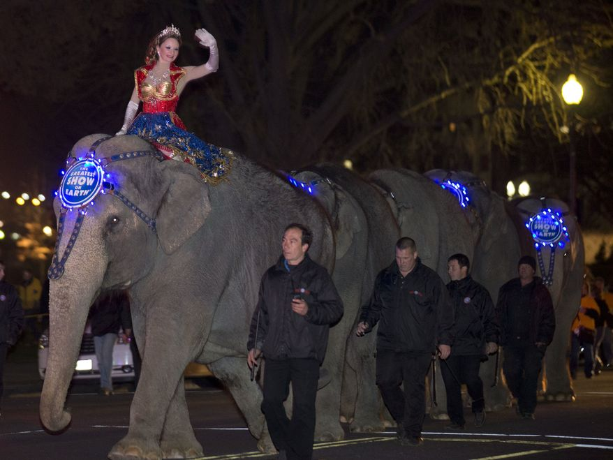 ** FILE ** A performer waves as elephants with the Ringling Bros. and Barnum & Bailey show, walk on 3rd Street in front of the U.S. Capitol on their way to the Verizon Center, to promote the show coming to town, Tuesday, March 19, 2013, in Washington. (AP Photo/Alex Brandon)