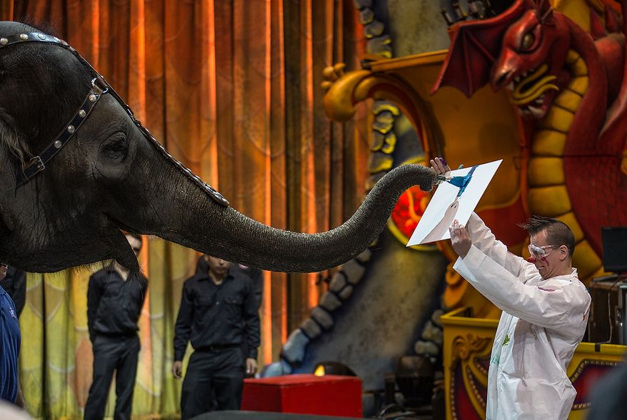 Kelly Anne, a 17 year old Asian elephant, with the Ringling Brothers, uses her trunk to paint brush to paint a canvas, held by performing artist, Sandor Eke, 37, from Budapest, Hungary, while children who are in the Young Rembrandts, a school art program, watch at the George Mason University Patriot Center, in Fairfax, VA., Thursday, April 11, 2013. (Andrew S Geraci/The Washington Times)
