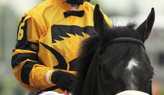 FILE - In this May 4, 2013, file photo, Mylute, with jockey Rosie Napravnik aboard, is led out during the post parade for the 139th running of the Kentucky Derby horse race at Churchill Downs Saturday in Louisville, Ky. Napravnik won her first race at Pimlico Race Course as a 17-year-old, and now, eight years later, she has a chance to become the first female jockey to win the Preakness. Napravnik will be aboard Mylute in Saturday's big race. (AP Photo/Gregory Payan, File)