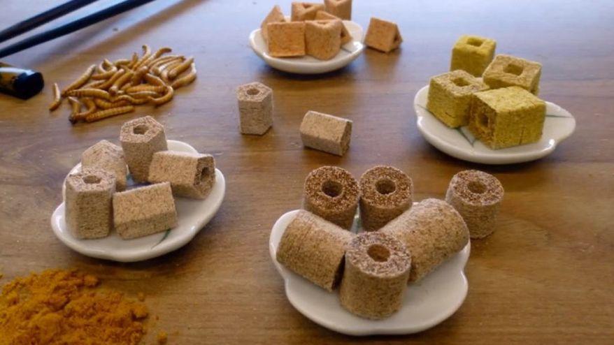3-D-printed food samples (TNO Research)