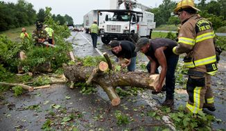 Passing motorists Charles Jenkins (center) and Tyler Hackworth (center right) work with members of the Lynchburg Fire Department to clear a tree that fell due to heavy winds across southbound lanes of U.S. 501 in Lynchburg, Va., on Thursday. (Associated Press)