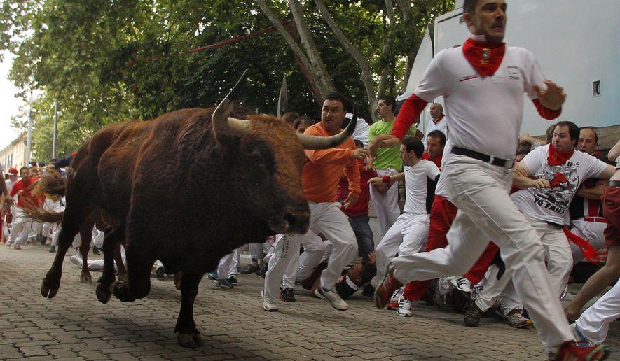 An 'El Pilar' fighting bull follows a reveler during the running of the bulls of the San Fermin festival, in Pamplona, Spain, Friday, July 12, 2013. (AP Photo/Daniel Ochoa de Olza)