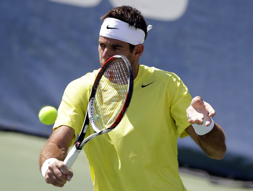 Juan Martin del Potro, from Argentina, hits the ball during a finals match against John Isner, of the U.S., at the Citi Open tennis tournament, Sunday, Aug. 4, 2013 in Washington. (AP Photo/Alex Brandon)