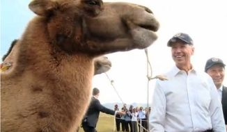 Vice President Joseph R. Biden poses with a camel in this photo tweeted by the White House.