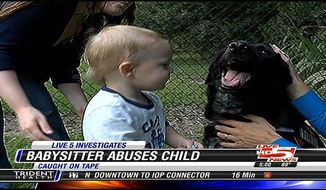 A couple says their dog sniffed out a baby abuser in their home, the woman who was supposed to be caring for their seven month old son.