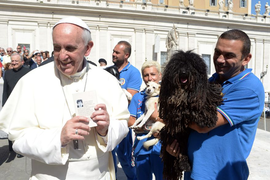 Pope Francis is shown a dog by a member of the Federazione Italiana Sport Cinofili (Italian Federation of Canine Sports) following his weekly general audience at the Vatican on Wednesday, Sept. 18, 2013. (AP Photo/L'Osservatore Romano)