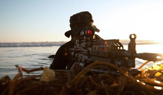 U.S. Navy SEALs in action. (U.S. Navy photo)