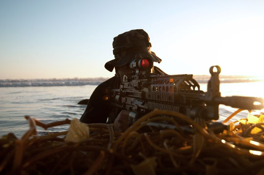 U.S. Navy SEALs in action. (U.S. Navy photo)
