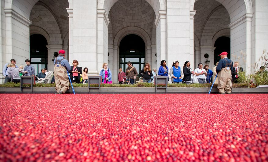 Jeff Lafleur, 45, (left) and Jim Bible, 52, (right) both Cranberry Farmers, answers questions for people who are interested in how cranberries are farmed during an informational exhibit on cranberries, presented by Ocean Spray, outside of Union Station in Washington, DC., Tuesday, October 8, 2013.  (Andrew S Geraci/The Washington Times)
