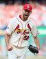 NLCS Dodgers Cardinals Baseball.JPEG-068c5.jpg