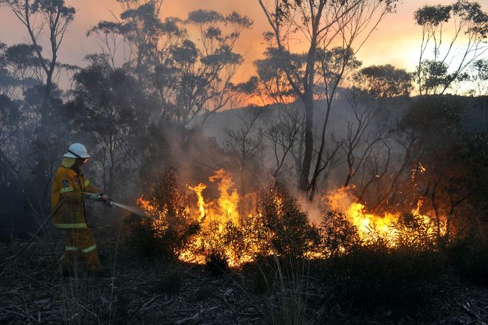 A New South Wales Rural Fire Service volunteer puts out a blaze in Bell, Australia, on Sunday, Oct. 20, 2013. Firefighters are battling some of the most destructive wildfires to ever strike Australia's most populous state. (AAP Image/Paul Miller)
