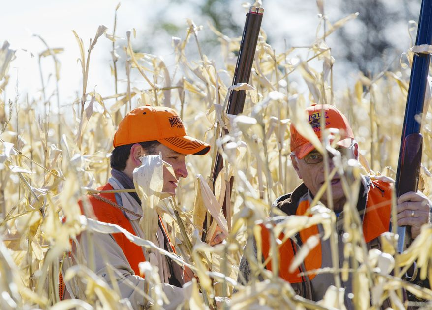 Sen. Ted Cruz, R-Texas, and Rep. Steve King, R-Iowa, navigate through a corn field during a hunt hosted by King on Saturday, Oct. 26, 2013, in Akron, Iowa. Cruz attended the Iowa GOP's annual fundraising dinner in Des Moines, Iowa, on Friday. (AP Photo/Nati Harnik)