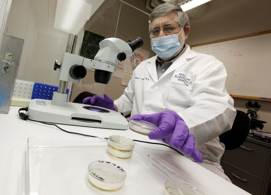 CUTTING EDGE: Dr. James Eliason studies induced pluripotent stem cell lines, an alternative to embryonic stem cell research. Grant funding seems to be trending toward projects that use adult stem cells. (ASSOCIATED PRESS)