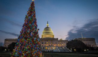 The U.S. Capitol Christmas tree is lit against the early morning sky Wednesday, Dec. 4, 2013, in Washington. The tree was officially lit Tuesday night to kick off the holiday season in the nation's capital. (AP Photo/J. David Ake)