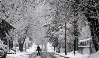 A man walks on a snowy road in Towson, Md., Tuesday, Dec. 10, 2013. Residents along the East Coast and in the Appalachians woke up to snow Tuesday and government workers and students in the Washington region were told to stay home as the area saw a round of snow that came just a few days after some parts already got several inches. (AP Photo/Patrick Semansky)