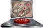 12152013_b1-singer-tablettar8201.jpg