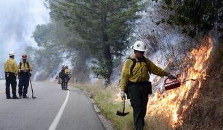 Firefighters light a backfire a backfire along Highway 1 between Pfeiffer Ridge Road and the Big Sur Station in Big Sur, Calif. on Wednesday Dec. 18, 2013. Calm winds helped crews as they closed in on fire in Los Padres National Forest near state Highway 1. The blaze had consumed 769 acres, or a little over a square mile, as the 20 percent containment figure officials gave earlier Wednesday was expected to climb.  (AP Photo/ Monterey County Herald, David Royal)