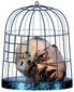 1_8_2014_b3-burke-cage-lock-8201.jpg