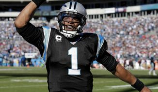 Carolina Panthers quarterback Cam Newton (1) celebrates a Carolina Panthers wide receiver Steve Smith touchdown against the San Francisco 49ers during the first half of a divisional playoff NFL football game, Sunday, Jan. 12, 2014, in Charlotte, N.C. (AP Photo/Chuck Burton)
