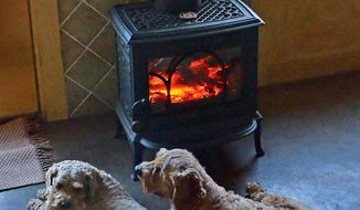 "FOR RELEASE MONDAY, JANUARY 20, 2014, AT 12:01 A.M. EST - In this Jan. 3, 2014 photo, the Ehlers' dogs, Snickers and Ruffles, curl up in front of a small wood stove, the only heat source needed for the entire house. David Ehlers refers to the home as an ""earth berm"" house, a term that refers to homes set in earth to make them more energy-efficient - the ground keeps the summer heat and winter cold well away from the walls. (AP Photo/The News-Topic, David Prewitt)"
