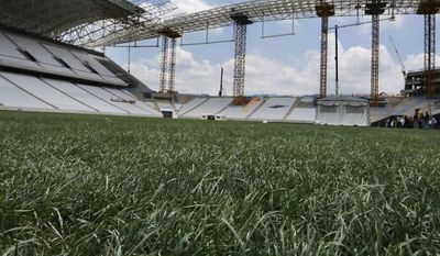 In this Dec. 8, 2013 photo, a mixture of artificial fibres and natural grass grows on the pitch of the Arena de Sao Paulo, in Sao Paulo, Brazil. At Arsenal's Highbury Stadium, Edu played on one of football's finest pitches. Award-winning Arsenal groundsman Paul Burgess became so well-known for his green fingers that he was eventually lured away by Real Madrid. So when Edu returned home to Brazil in 2009 to finish his career, the worn and sorry state of some Brazilian football fields was an eye-opener. Even now, as the World Cup host rushes to ready itself, Edu says pitches in Brazil aren't on a par with those in Europe, where he played for eight years, at Arsenal and Valencia. (AP Photo/Ferdinand Ostrop)