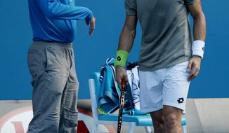 Spain's David Ferrer, right, stands by a line judge after he pushed the linesman away so he could lay his towel on the judge's chair during his quarterfinal loss to Tomas Berdych of the Czech Republic at the Australian Open tennis championship in Melbourne, Australia, Tuesday, Jan. 21, 2014.(AP Photo/Aaron Favila)