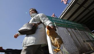 In this Tuesday, Jan. 21, 2014 photo, a woman carries a chicken as she leaves a wholesale poultry market in Shanghai. A spate of bird flu cases since the beginning of the year in China has experts watching closely as millions of people and poultry are on the move ahead of the Lunar New Year holiday, the world's largest annual human migration. (AP Photo)