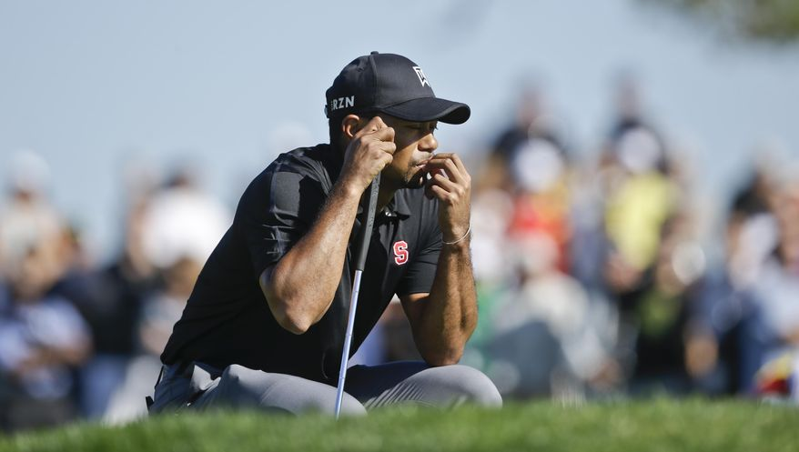 Tiger Woods waits his turn on the second green of the South Course at Torrey Pines during the third round of the Farmers Insurance Open golf tournament Saturday, Jan. 25, 2014, in San Diego.  (AP Photo/Lenny Ignelzi)