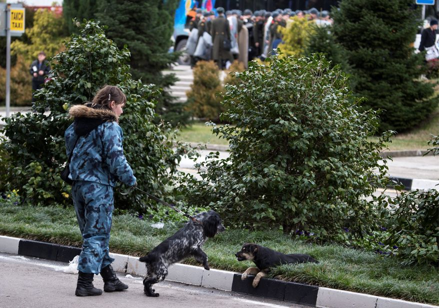 A female officer watches her sniffing dog playing with a stray dog near Sochi airport, Russia, Monday, Jan. 27, 2014. Russia has spent about $51 billion to deliver the Winter Olympics in Sochi, which run Feb. 7-23. (AP Photo/Pavel Golovkin)