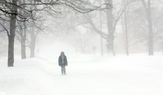 Eric Finney, 29, of Muskegon walks along a snow covered Forest Avenue near the Seventh Street intersection in Muskegon while on the way to visit a friend on Monday Jan. 27, 2014.  Sub-zero wind chills and additional snow forced the closing of areas schools. (AP Photo/The Muskegon Chronicle, Ken Stevens)