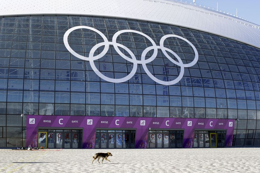 A stray dog walks outside the Ice Dome venue as preparations take place for the 2014 Winter Olympics Monday, Feb. 3, 2014, in Sochi, Russia. A pest control company which has been killing stray dogs in Sochi for years told The Associated Press on Monday that it has a contract to exterminate more of the animals throughout the Olympics. (AP Photo/Patrick Semansky)