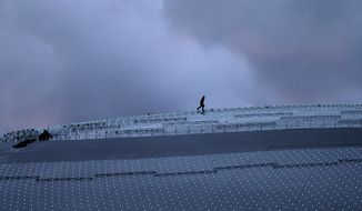 A worker walks along the roof of the Bolshoy Ice Dome at dusk while last minute preparations are underway, a day before the opening ceremony of the 2014 Winter Olympics, Thursday, Feb. 6, 2014, in Sochi, Russia. (AP Photo/Wong Maye-E)