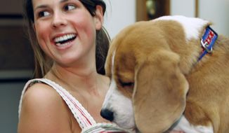 FILE - In this July 23, 2008, file photo, Sydney Perry, daughter of Texas Gov. Rick Perry, holds Uno, winner of the Westminister Kennel Club's best in show, during a meeting in the governor's office in Austin, Texas. Now home on the range in Texas, far from the rings that made him famous, Uno is still living up to his name as No. 1. (AP Photo/Harry Cabluck, File)