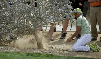 Rickie Fowler hits from under a cactus on the 15th hole in his match against Sergio Garcia, of Spain, during the third round of the Match Play Championship golf tournament on Friday, Feb. 21, 2014, in Marana, Ariz. (AP Photo/Ted S. Warren)