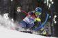 Sochi Olympics Alpine_Lanc(2).jpg