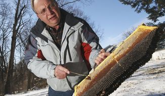 In this Feb. 3, 2014 photo, Sangamon Valley Beekeepers Association member Dave Pangrac shows an empty bee colony frame from one of his hives in his backyard in Decatur, Ill. Pangrac discovered that his hives were empty in the autumn, showing symptoms of colony collapse disorder. Colony collapse disorder is a phenomenon involving the mass exodus of honeybees and became a global concern in 2006, when beekeepers were reporting colony losses by the millions. (AP Photo/Herald & Review, Jim Bowling)