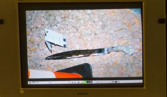 An evidence photo showing a machete is displayed on a video monitor during a trial for Armando Vergara-Martinez at the Clark County Regional Justice Center, Tuesday, Feb. 25, 2014, in Las Vegas. He is accused of attacking a woman with a machete in the parking lot of a North Las Vegas store in 2012. (AP Photo/Las Vegas Sun, Steve Marcus)   LAS VEGAS REVIEW-JOURNAL OUT.