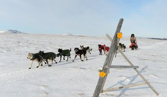 Iditarod musher Jeff King, from Denali, Alaska, mushes between the checkpoints of White Mountain and Safety, the last checkpoint before the finish line in Nome. King was the first musher to leave the White Mountain checkpoint during the 2014 Iditarod Trail Sled Dog Race on Monday, March 10, 2014. (AP Photo/The Anchorage Daily News, Bob Hallinen) ** FILE **