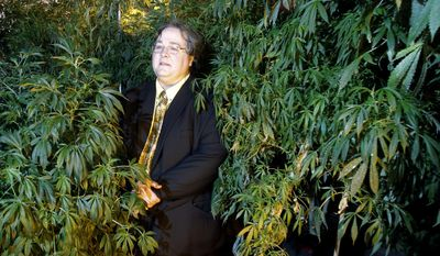 FILE - In this March 28, 2011, file photo, Paul Stanford stands between plants in his marijuana growing facility in Portland, Ore.   Stanford wants the right to smoke marijuana to be written into the state constitution.  (AP Photo/Rick Bowmer, File)