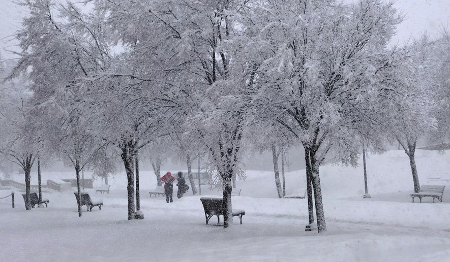 ** FILE ** Two pedestrians stand near the Schine Student Center on the Syracuse University campus during a snow storm on Wednesday March 12, 2014, in Syracuse, N.Y. (AP Photo/The Syracuse Newspapers, Mike Greenlar)