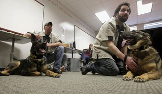 In this March 6, 2014 photo, Laky, left, a retired Baltimore County Sheriff K-9, and Zander, a retired Massachusetts State Police K-9, relax with their respective handlers Dave Crawford and Kevin Finizio, both disabled Navy veterans, after a presentation given by Northern Illinois University students on the Save-A-Vet program in Dekalb, Ill. NIU chose to help Save-A-Vet in January because the organization is the only one in the nation that saves decommissioned service dogs. (AP Photo/Daily Chronicle, Monica Maschak)  MANDATORY CREDIT