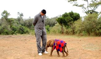 This undated image released by Animal Planet shows retired Chinese professional basketball player Yao Ming with a baby elephant. Ming sets off to help save Africa's elephants and rhinos from extinction by changing a 1,000-year-old Chinese tradition and ending the trade of illegal ivory and rhino horn in his native China in an Animal Planet special airing in the fall. (AP Photo/Animal Planet)