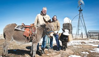 University of Wyoming professor of civil and architectural engineering Michael Barker and his wife, Susan pose for a photo with their two Mediterranean miniature donkeys, Frodo and Edith in front of a windmill on their Windy Springs, Wyo.,  Ranch on March 19, 2014.   (AP Photo/Laramie Daily Boomerang, Jeremy Martin)