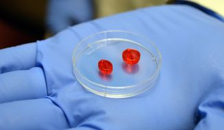 In this March 6, 2014 photo, a 3-D printer was used to construct these tiny two-ventricle cylinders at the University of Louisville, in Louisville, Ky. Researchers are working on a project to build a human heart using a 3-D printer and human cells. (AP Photo/Dylan Lovan)