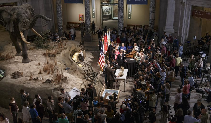 The fossilized bones of a Tyrannosaurus rex, center, are displayed for the media during a ceremony at the Smithsonian Museum of Natural History in Washington, Tuesday, April 15, 2014. The Tyrannosaurus rex is joining the dinosaur fossil collection on the National Mall on Tuesday after a more than 2,000-mile journey from Montana.  For the first time since its dinosaur hall opened in 1911, the Smithsonian's National Museum of Natural History will have a nearly complete T. rex skeleton. FedEx is delivering the dinosaur bones in a truck carrying 16 carefully packed crates.  (AP Photo/J. Scott Applewhite)