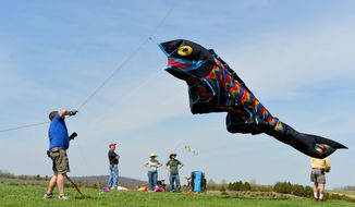 """** FILE ** Jeff May of Staunton works to get an oversized fish kite back into the air after the wind disappeared long enough for it to fall back to earth during the """"Kites and Critters"""" event in Staunton, Va., on Sunday, April 13, 2014. (AP Photo/The News Leader, Mike Tripp)"""
