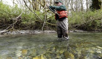 In this photo taken Tuesday, April 15, 2014, fisheries biologist Pete Verhey tags an overhanging branch after finding a salmon spawning nest in Squire Creek, a tributary of the North Fork of the Stillaguamish River, near Darrington, Wash. Finding the nest, called a redd, is an encouraging sign that steelhead trout may be making their way upstream from Oso., Wash., above where a massive landslide decimated a riverside neighborhood a month ago and pushed several football fields worth of sediment down the hillside and across the river. As search crews continue to look for people missing in the slide, scientists also are closely monitoring how the slide is affecting federally endangered fish runs, including Chinook salmon and steelhead. (AP Photo/Elaine Thompson)