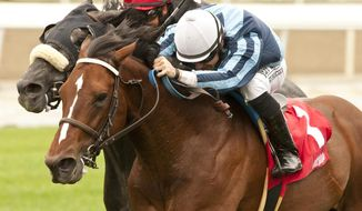 This photo provided by Benoit Photo shows Pablo Gomez' Quick Casablanca and jockey Joe Talamo, right, winning the $100,000 Gr. III Last Tycoon Stakes Friday, April 25, 2014, at Santa Anita Park, Arcadia, Calif.  (AP Photo/Benoit Photo)