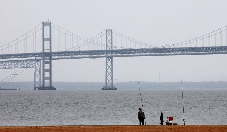 In this Wednesday, May 12, 2010, file photo, a man looks out over the Chesapeake Bay, with the Bay Bridge in the background, at Sandy Point State Park in Annapolis, Md. (AP Photo/Jacquelyn Martin, File)